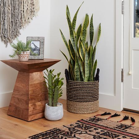 Picture for category End Table & Side Table